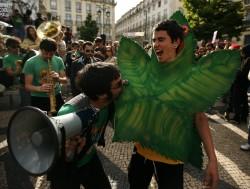 Легализация марихуаны в США – последствия нового законопроекта