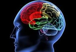 Как влияют наркотики на мозг человека?