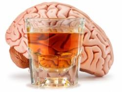 Алкоголь и его влияние на мозг