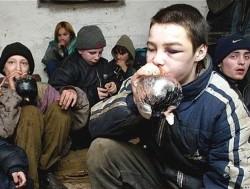 Токсикомания и ее последствия