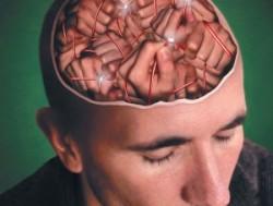 Курение в юном возрасте разрушает серое вещество в коре головного мозга