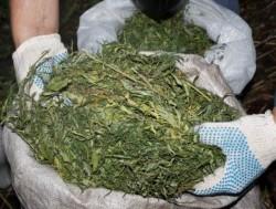 Винницкого  подростка обвиняют в торговле наркотическими веществами
